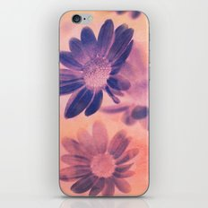 Daisies on Canvas iPhone & iPod Skin