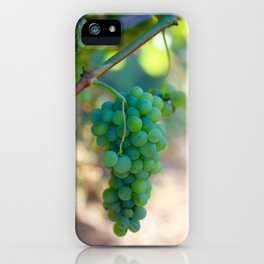 Sauvignon Blanc Grapes on the Vine iPhone Case