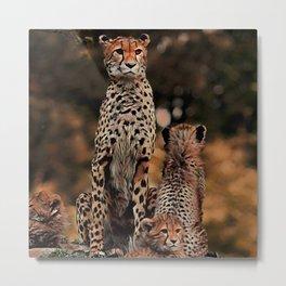 AnimalMix Cheetah 011 Metal Print