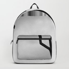 Towards the Inevitable Backpack