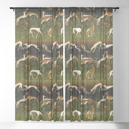 Sighthounds Sheer Curtain