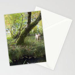 Maisie at the Pond Stationery Cards