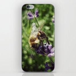 Tasty Lavender iPhone Skin