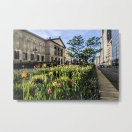 Unopened tulips by Chicago's Art Institute one spring morning Metal Print