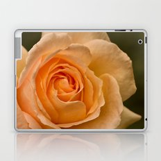 Dew Kissed Rose Floral Laptop & iPad Skin