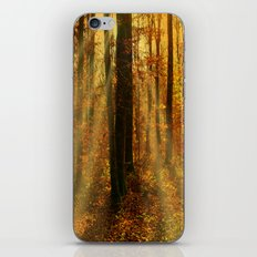 Did you see the fairies? iPhone & iPod Skin