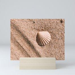 Summer Sea Shell Mini Art Print