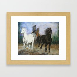 Black and White Horses Framed Art Print