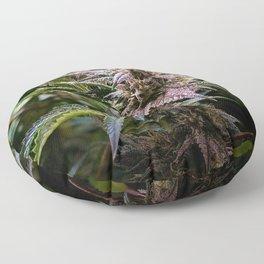 Purple Cannabis Bud in Black Floor Pillow
