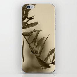 Olive Branch iPhone Skin