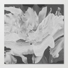 Untitled 20170317p (Arrangement) Canvas Print