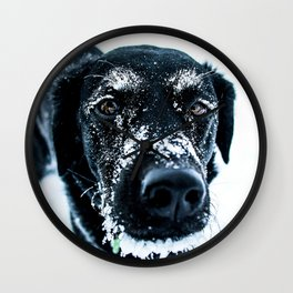 Snow Dog // Cross Country Skiing Black and White Animal Photography Winter Puppy Ice Fur Wall Clock