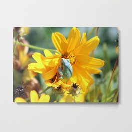 Froggy Floral Metal Print