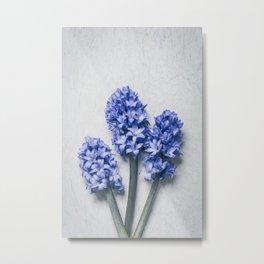 Three Blue Hyacinths Metal Print