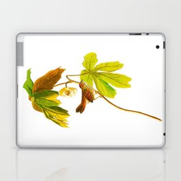 Swamp Sparrow Laptop & iPad Skin