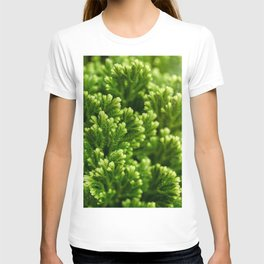 Green floral background T-shirt