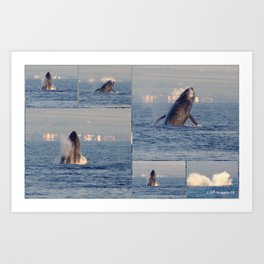 """""""baby whales tales""""- Mauii Art Print"""