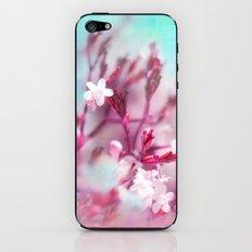 PINK FAIRIES iPhone & iPod Skin
