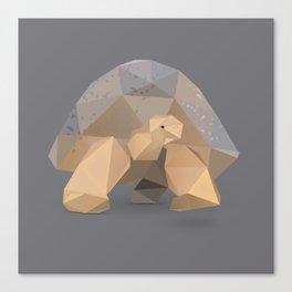 Giant Tortoise.  Canvas Print