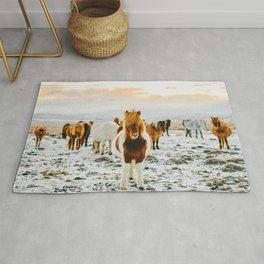 Wild Horses / Iceland Rug