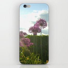 Purple Pansy iPhone Skin