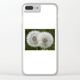 Dandelions Clear iPhone Case
