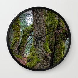 TWO BIG LEAF MAPLE TREES Wall Clock