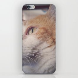 Lenny iPhone Skin