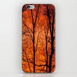 Leafless Trees At October Sunrise #decor #buyart #society6 iPhone Skin