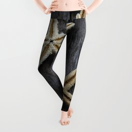 Starfishes in wooden Leggings