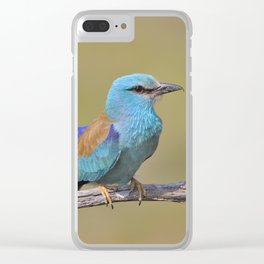 European roller Clear iPhone Case
