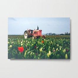 John Deere Tractor at Tulip Farm Metal Print