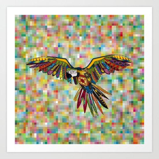 harlequin parrot Art Print