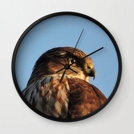 Young Cooper's Hawk Wall Clock