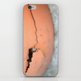 Knock Knock 2 iPhone Skin