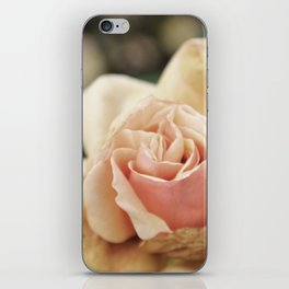 Delicate Rose iPhone Skin