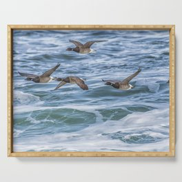 Brent Geese in Flight Serving Tray