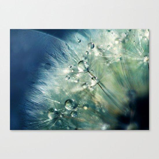 Dandelion Drama Canvas Print