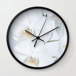 White orchids flowers pure white romantic Wall Clock