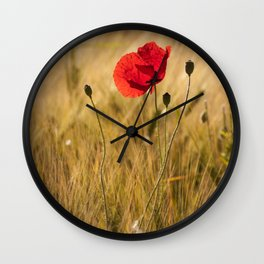 Poppies in a summerfield - Flowers Floral Wall Clock