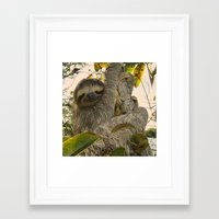 sloth Framed Art Prints featuring Sloth by MehrFarbeimLeben