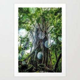 Rainy Day Under the Banyon Tree Art Print