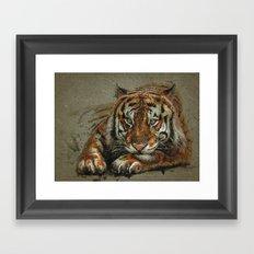 Tiger background Framed Art Print