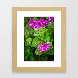Vivid Flower Framed Art Print