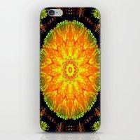 Citrus Slice Kaleidoscope iPhone & iPod Skin