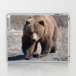 Alaskan Grizzly Bear - Spring Laptop & iPad Skin