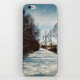 Winter Path iPhone Skin