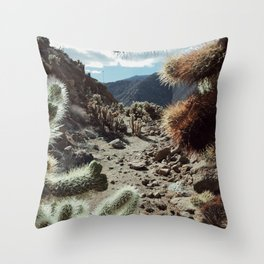 Cholla Frame Throw Pillow