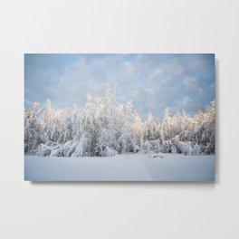 Snowy Tree Horizion Metal Print