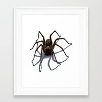 spider Framed Art Prints featuring SPIDER by aztosaha